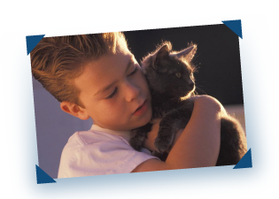 Child holding pet cat