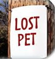 september newsletter lost pet